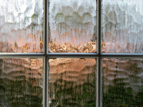 Misted Glass